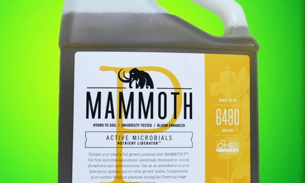 Mammoth P explained