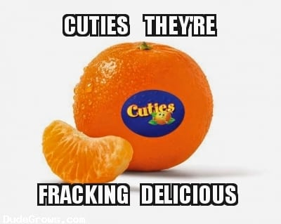 Fracking Delicious