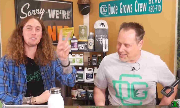 Dude Grows Show Special Grow Talk Making Rosin From Fresh Frozen Material